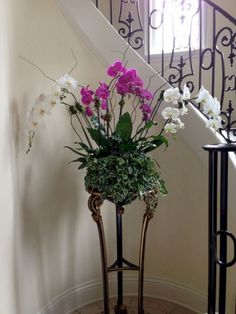orchid arrangements Landscape Traditional with indoor plants interior landscaping interior plants orchids Potted Orchid Centerpiece, Orchid Flower Arrangements, Orchids Garden, Orchid Plants, Hanging Orchid, Orchid Roots, Types Of Orchids, Growing Orchids, Flower Garden Design