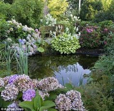 Make A Small Splash Little Pond Will Encourage Diverse Plants And Wildlife To Visit