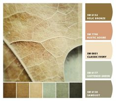 Instantly turn any picture into a palette with ColorSnap, created for you by Sherwin-Williams. Exterior Paint Colors, Paint Colors For Home, Room Colors, House Colors, Colorful Decor, Colorful Interiors, Paint Color Schemes, Theme Color, Color Palate