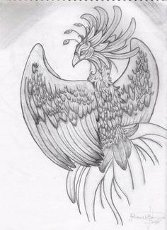 Beautiful Bird