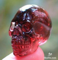 Real Human Skull, Cute Skeleton, Skull Island, Rock Collection, Crystal Skull, Skull And Bones, Skull Art, Rocks And Minerals, Stones And Crystals