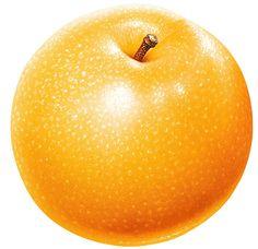 Fruit and Berries Photo Stock - Sonia.2 - Webové albumy programu Picasa