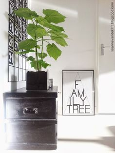 think that house greens can do a lot for any indoor space. Indoor Plants, Indoor Garden, Palm Plant, Interior Plants, Green Rooms, Scandinavian Interior, Green Plants, Home Living Room, Black Cabinets