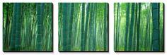 Bamboo Forest, Sagano, Kyoto, Japan Canvas Art Set