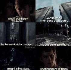 3 years later | The maze runner ( newt x reader ) - Story | Quotev