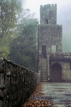 Old castle in the fog.
