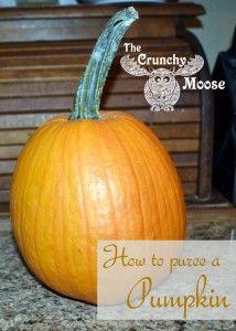 How to Puree a Pumpkin