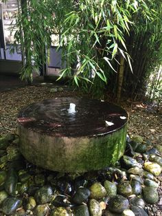 Water feature at Mein  Ruys garden in the Netherlands .
