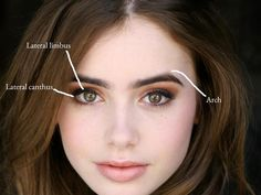 What makes Lily Collins' eyebrows so perfect? — Lara Devgan, MD, MPH   Female Plastic Surgeon   New York City   Manhattan
