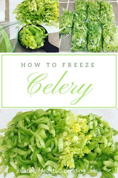 How To Freeze Celery Celery is one of those vegetables you need to add amazing flavor to so many soups and dishes, however, I don't… How To Freeze Celery, Freezing Celery, Freezing Fruit, Carrot Recipes, Healthy Recipes, Jelly Recipes, Potluck Recipes, Freezing Vegetables, Veggies