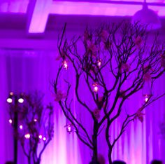 Event Lighting Design by Got Light Pantone Color of the Year 2014: Radiant Orchid Lighting Design #radiantorchid #pantone #2014