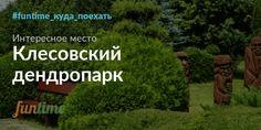 Клесовский дендропарк - рукотворное чудо природы в Ровенской области