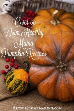 66 Trim Healthy Mama Pumpkin Recipes