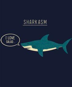 This really shouldnt be this funny haha Funny Pins, The Funny, Haha, Shark Bait, Shark Shark, Hammerhead Shark, Funny Tee Shirts, Men Shirts, Jokes