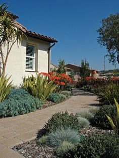 Colorful natives and a flagstone walkway prove that water efficiency does not have to equal bland.