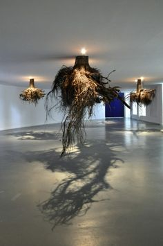 """Tree roots hung in gallery.Surreal..""""This exhibit gives us an idea of what it would be like if we could walk around underground and gaze at the root systems of trees, invisible from our place above the surface of the soil. Humus 2012 by Guiseppe Licari took over Tent Rotterdam, hanging tree roots from the ceiling."""""""