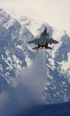 McDonell Douglas F-15E Strike Eagle