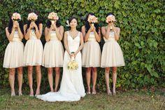 imaginewedding [tumblr]