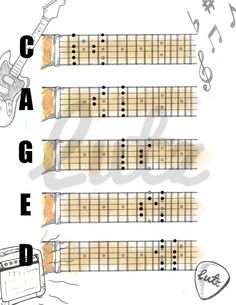CAGED Pentatonic Shapes in the Key of D Major