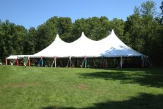 Everything You Need to Know About Renting a Tent | Arena Americas