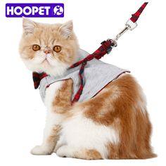 Cheap leash set, Buy Quality dog walk directly from China harring jacket Suppliers:   HOOPET Samll Cat Dog walking Fabric Harness Jacket Vest Leash 2 size Fashion design