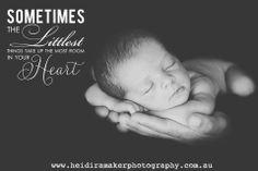 Adorable Newborn | www.heidiramakerphotography.com.au |  Heidi Ramaker Photography