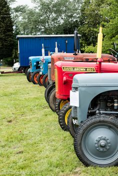 https://flic.kr/p/HYCYmT | British Tractors | Something else we don't make any more. Seen at Stapleford Park open weekend 11 June 2016. Panasonic TZ100.