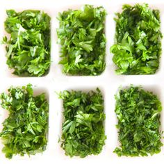 Consider freezing chopped fresh herbs in ice-cube trays. Drop a teaspoon or two of herbs into each cube and fill with water or chicken broth. Pop out the cubes to add to sauces or soups.