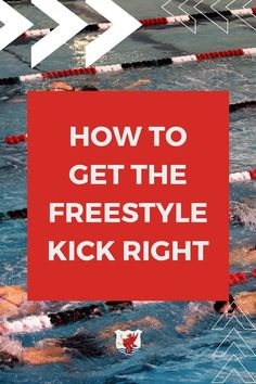 Are you trying to improve your freestyle kicking technique? Acquiring the capability to kick freestyle fast requires that a swimmer develop three crucial abilities, and we're going over all of them on the blog Breaststroke Swimming, Swimming Drills, Swimming Gear, Kids Swimming, Swimming Workouts For Beginners, How To Swim Faster, Teach Kids To Swim, Baby Swim Float, Freestyle Swimming