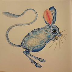 257 Best Adult Coloring Mice And Bunnies Images On Pinterest