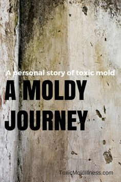 One woman's personal story with a toxic mold illness. | www.ToxicMoldIllness.com