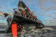Team Alvimedica - Volvo Ocean Race 2014 - 2015