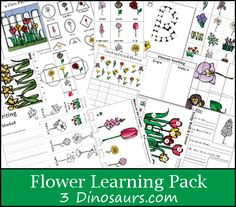 Free Flower Learning Pack over 130 pages of activities plus a Tot pack - Great for ages 2 to 8- 3Dinosaurs.com