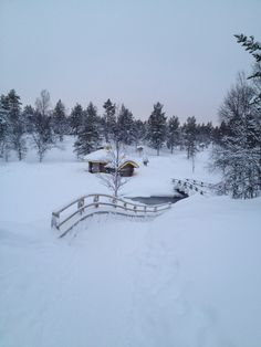 Ivalo, Finland LAPLAND The place I had ever felt the only & one person in the world and so peacefull.