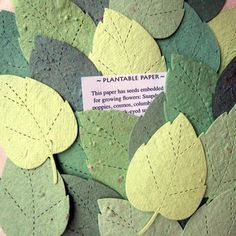 Plantable paper wedding favours but shells instead of leaves with English marigold seeds. Find more wedding favour ideas here http://raspberrywedding.com/category/raspberry-wedding/decoration/stationeryandfavours/