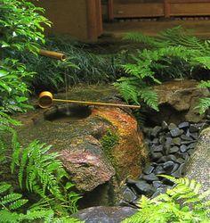 The Tsukubai and it's water basen called the Chosubachi : Chaniwa Japanese Garden the Tsukubai