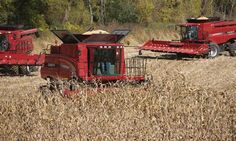 Axial-Flow Family: Meet the Industry's Largest Lineup International Tractors, International Harvester, Equipment Cases, Case Ih Tractors, Engin, Harvest Time, Lineup, Agriculture, Farms
