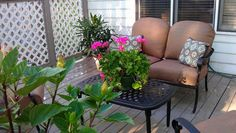 Hometalk :: Im still struggling with my yard so Ive been decking out my deck. (h…