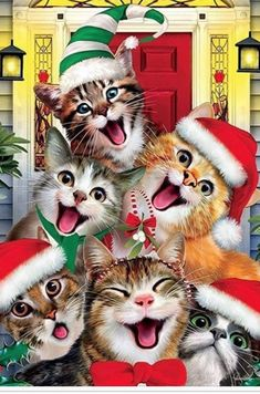 This adorable kitty cat garden flag shows a hilarious group of cats all dressed up for Christmas, making faces and posing for a selfie. Christmas Kitten, Christmas Animals, Vintage Christmas, Handmade Christmas, Christmas Scenes, Christmas Pictures, Baby Animals, Cute Animals, Christmas Garden Flag