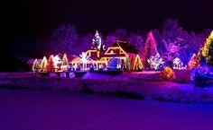 Christmas, night, lights, beautiful house, trees, white snow, winter
