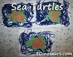 Turtle craft we made after reading the book In The Sea by David Elliott and Holly Meade.