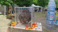 Exposition du Nid de Frelon Asiatique d'Azzura Lights trouvé à Vence. © Azzura Lights - Tous Droits Réservés