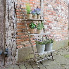 Dimensions 48 X 42 X 106 CMS Easy assembly no tools required Folds flat when not in use. Perfect for a small space 3 display shelves Plant Ladder, Ladder Decor, Small Plant Stand, Plant Stands, Fallen Fruits, Aging Metal, Wooden Shelves, Ladder Shelves, Shelving