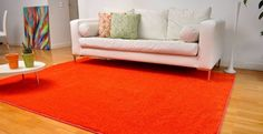 Discount Carpet and Flooring : Carpets, carpets, mats and rugs,...