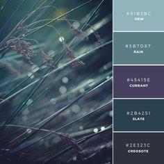 Morning Mist Color Palette grays, eggplant & charcoal tones Build your brand: 20 unique color combinations to inspire you – Canva Purple Color Palettes, Colour Pallette, Color Combos, Purple Color Schemes, Blue Palette, Purple Paint Colors, Dark Colors, Duck Egg Blue Colour Palette, Website Color Palette