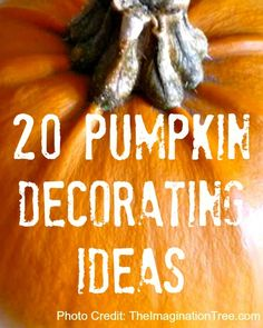 20 Fabulous Pumpkin Decorating Ideas - We love to browse and plan and discuss and decide....... here are great ideas for you!