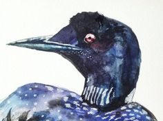 Watercolor Painting original painting loon bird 5x7 by WoodPigeon