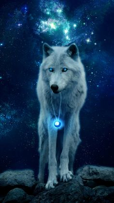 Wallpapers digital art, art, arctic wolf, canis lupus tundrarum, dog like mammal – animal wallpaper Wolf Wallpaper, Animal Wallpaper, Galaxy Wallpaper, Wallpaper Backgrounds, Cellphone Wallpaper, Wallpaper Desktop, Iphone Wallpapers, Wallpaper Quotes, Wolf Background
