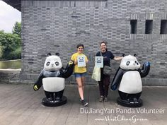 China DuJiangYan Panda Volunteer ChengDu WestChinaGo Travel Service www.WestChinaGo.com Tel:+86-135-4089-3980 info@WestChinaGo.com Volunteer Programs, Chengdu, Day Tours, Panda, China, Travel, Viajes, Destinations, Traveling