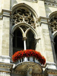 Rathaus, balcone fiorito
